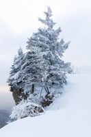Winter experiences