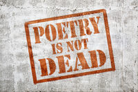 poetry is not dead -  graffiti on stucco wall