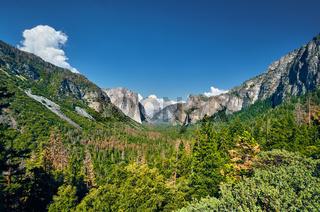 Yosemite National Park Valley summer landscape