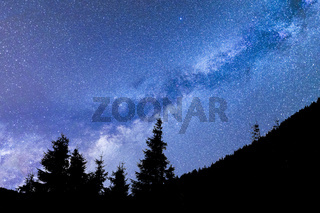 Blue Milky way falling stars pine trees silhouette