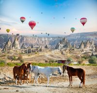 Hot air ballooning horses in Cappadocia, Turkey