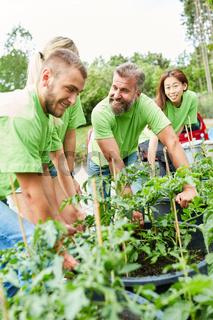 Team Gärtner oder Umweltschützer mit Pflanzen