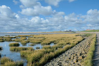 Coastline of Norddeich at North Sea in East Frisia,lower Saxony,Germany