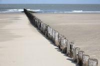 Coastal protection by wooden groynes on the sandy beach