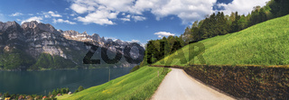European summer landscape with Alps and lake