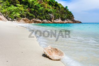 Coral on a beach, Perhentian Islands, Malaysia