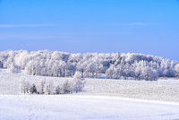 landscape in winter in Masuria