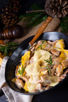 Colorful farfalle pasta with chanterelles and cream sauce.