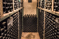 Vintage wine bottles in a cellar