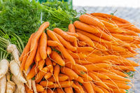 Fresh carrots on a market