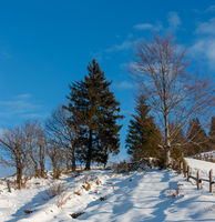Winter  morning mountain rural snow covered path