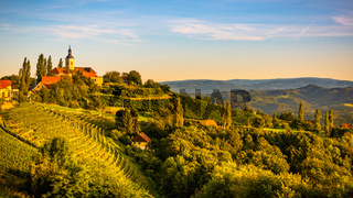 Autumn Landscape panorama of vineyard on an Austrian countryside during sunset in Kitzeck im Sausal