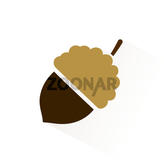 Acorn icon with shadow. Flat vector illustration