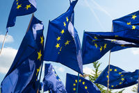 Euro flags in the wind