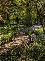 Yorkshire Dales - Garden