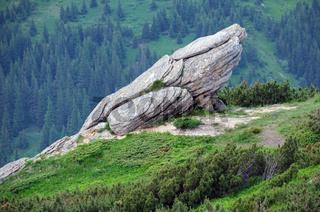 Summer Carpathian mountain landscape.