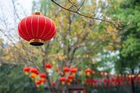 Red chinese lanterns hanging on trees