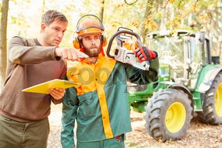 Holzfäller in Schutzausrüstung und Forstwirt