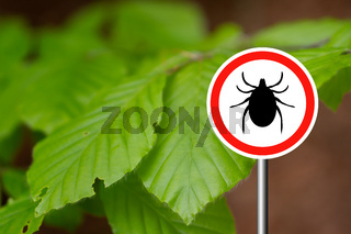 Tick sign in a green forest