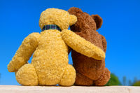 Two toy bears in love in front of blue sky