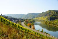 Burg on the Moselle