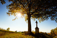 Kreuz unter einem Baum mit Herbstlaub bei Gegenlicht