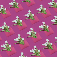 Decorative background with gift envelopes of tulips flowers on a magenta.