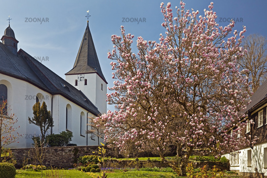 church Mariae Himmelfahrt, Schoenholthausen, Finnentrop, Sauerland, Germany, Europe