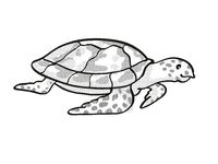 Hawksbill turtle Endangered Wildlife Cartoon Mono Line Drawing