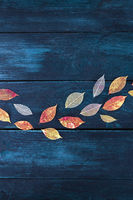 Autumn background with flat lay vibrant autumn leaves on a dark blue wooden texture, a design template with a place for text