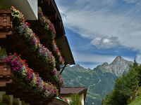 Zillertaler alps, house with flower decoration