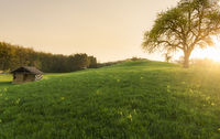 Sunset over a barn and spring meadow