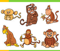 monkeys and apes animal characters cartoon set