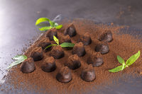 Homemade chocolate truffles with mint sprinkled with cocoa powder