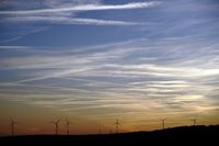 Silhouettes of wind turbines in front of the evening sky