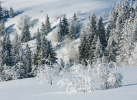 Winter mountain snowy landscape