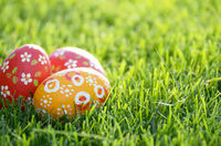 Handmade Painted Easter eggs on green spring grass. Space for text