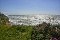 baltic shore impression