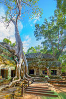 Ruins of Ta Prohm temple