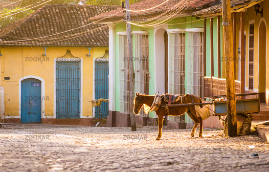 Horse carriage in colonial Trinidad, Cuba