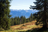 Bavarian Landscape 029. Germany