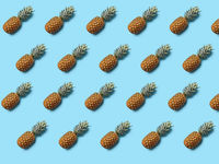 Whole tropical pineapple fruit with green leaves on blue background. Food layout. Flat lay