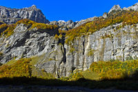Autumn colours in the Cirque du Fer a Cheval, Sixt-Fer-a--Cheval, Giffre Valley, Haute-Savoie,France