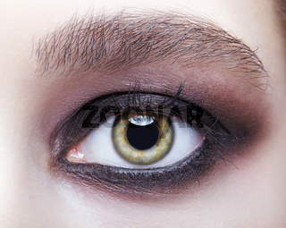 Closeup macro portrait of human female eye with violet - black smoky eyes make-up.