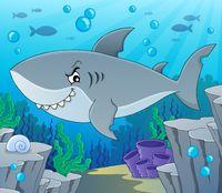 Shark topic image 2