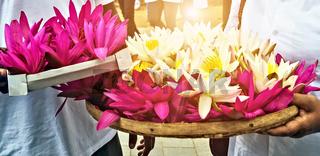 Visakha Bucha Day. Buddha's birthday lotus flower meditation rel