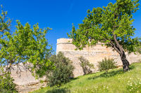 Old city walls of Lagos seen from a park area, Lagos, Algarve, Portugal, Europe