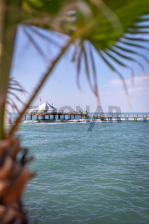 in the foreground is a green palm leaf and in the background the blue sea and a jetty