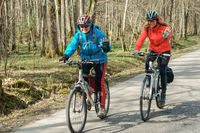 Cycling on the forest road, two cyclists