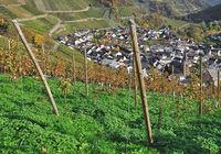 D--RP--Ahrtal--Weinort Dernau2.jpg